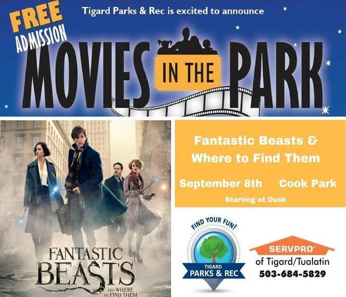 Movies in the Park - Fantastic Beasts & Where to