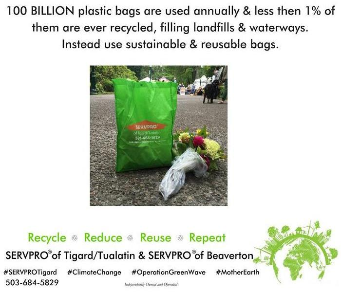 100 Billion plastic bags