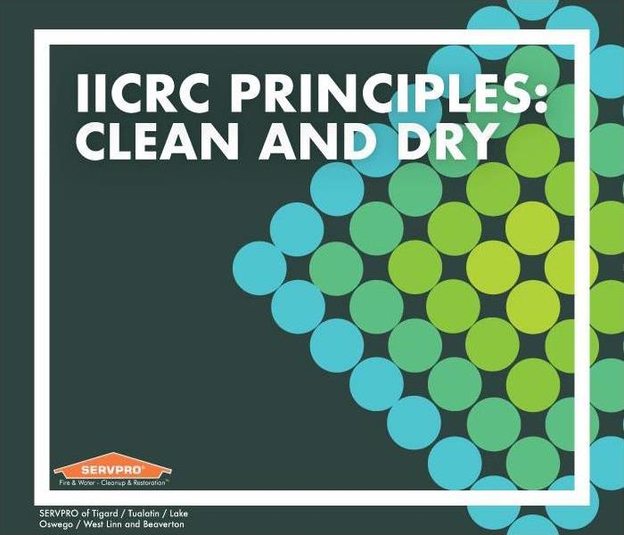 "Green and blue dots in a diamond. Text reads: ""IICRC Principles: Clean and Dry"""