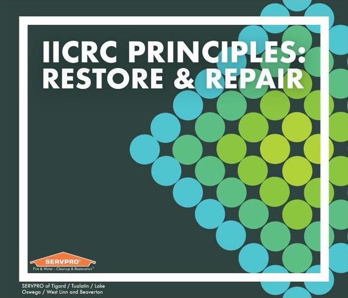 "blue and green dots in diamond shape. Text reads: ""IICRC Principles: restore & repair"""