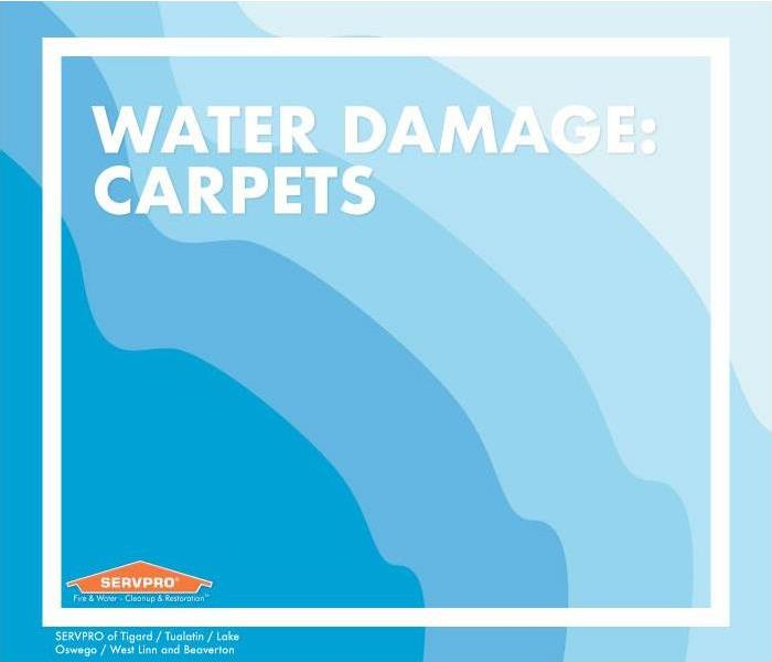 Blue color gradient from dark to light, text that reads water damage: carpets