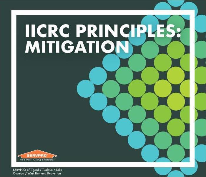 "Green and blue dots in a diamond pattern. Text reads: ""IICRC Principles: Mitigation"""