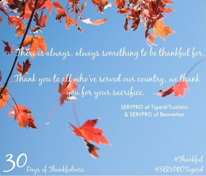 General 30 Days of Thankfulness, Day 11