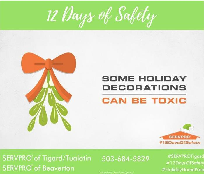 Commercial 12 days of Safety, Day 6 plant safety