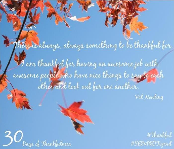 General 30 Days of Thankfulness, Day 18