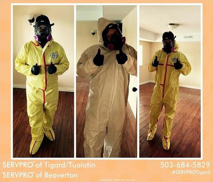 Mold Remediation Is mold affecting your business?