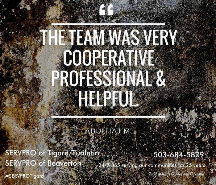 "Mold Remediation ""Like it never even happened.""®"