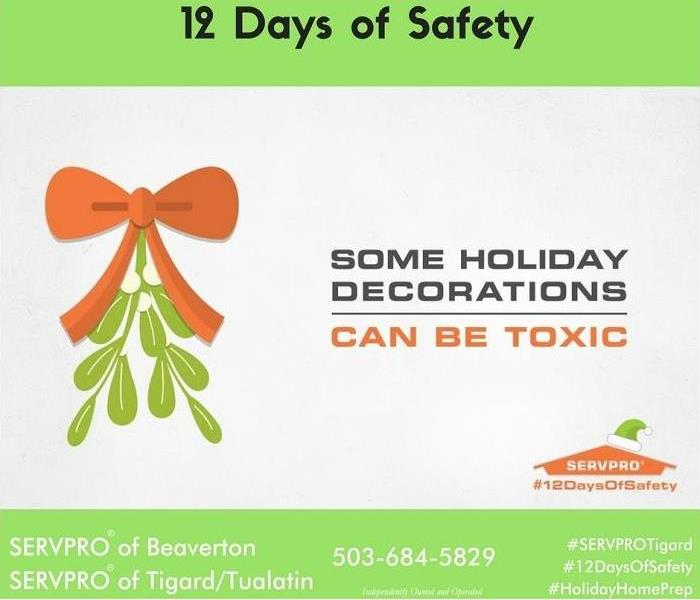 Fire Damage 12 Days of Safety, Day 6; Plant Safety