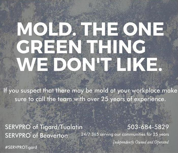 Mold Remediation Only green thing we don't like