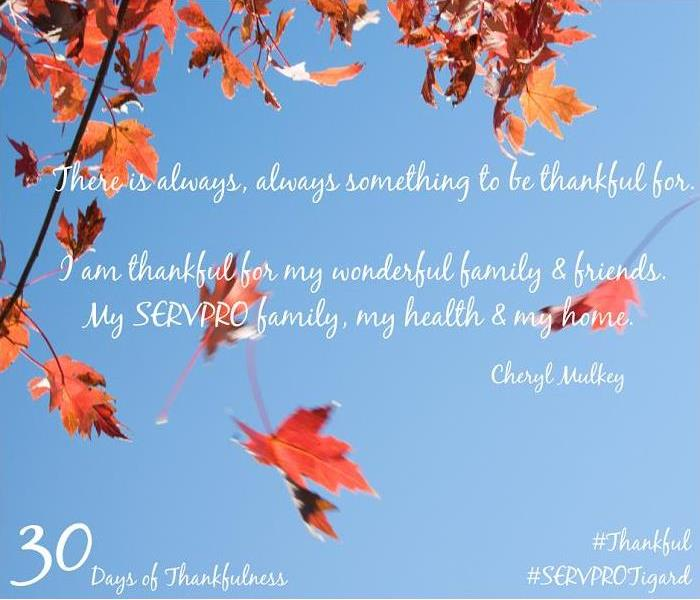 General 30 Days of Thankfulness, Day 6