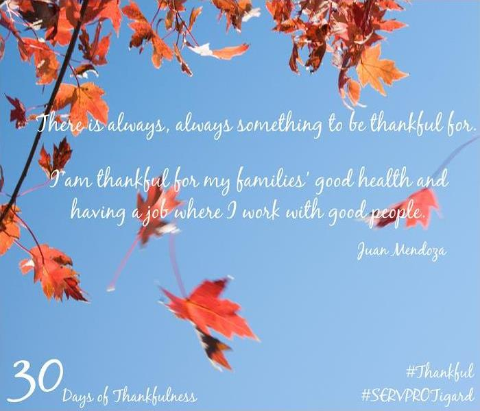General 30 Days of Thankfulness, Day 12