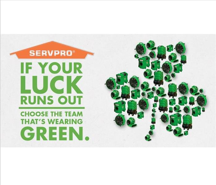 Mold Remediation Happy Saint Patrick's day from your friends at SERVPRO of Tigard/Tualatin!