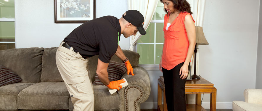 Tigard, OR carpet upholstery cleaning