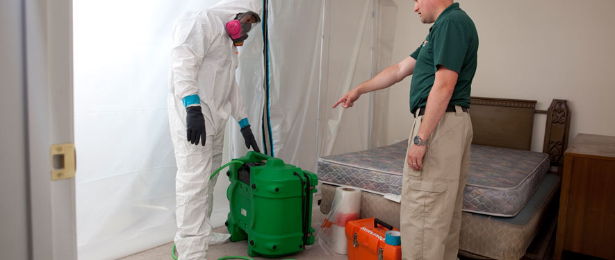 Tigard, OR mold removal process